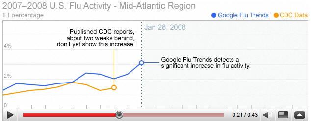 googleflue